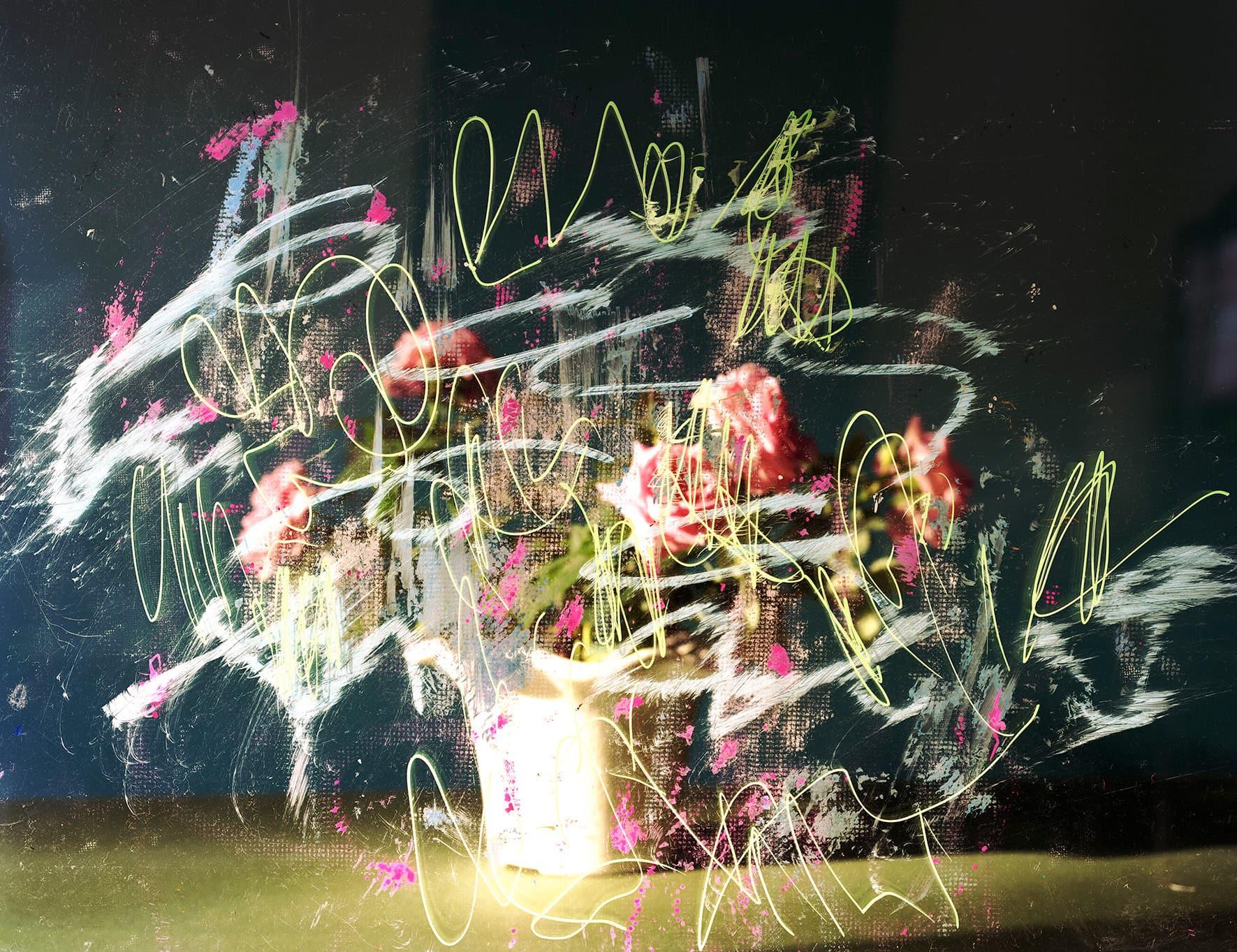 Kazuhito Tanaka, pLastic_fLowers Ⅱ #20, 2017年