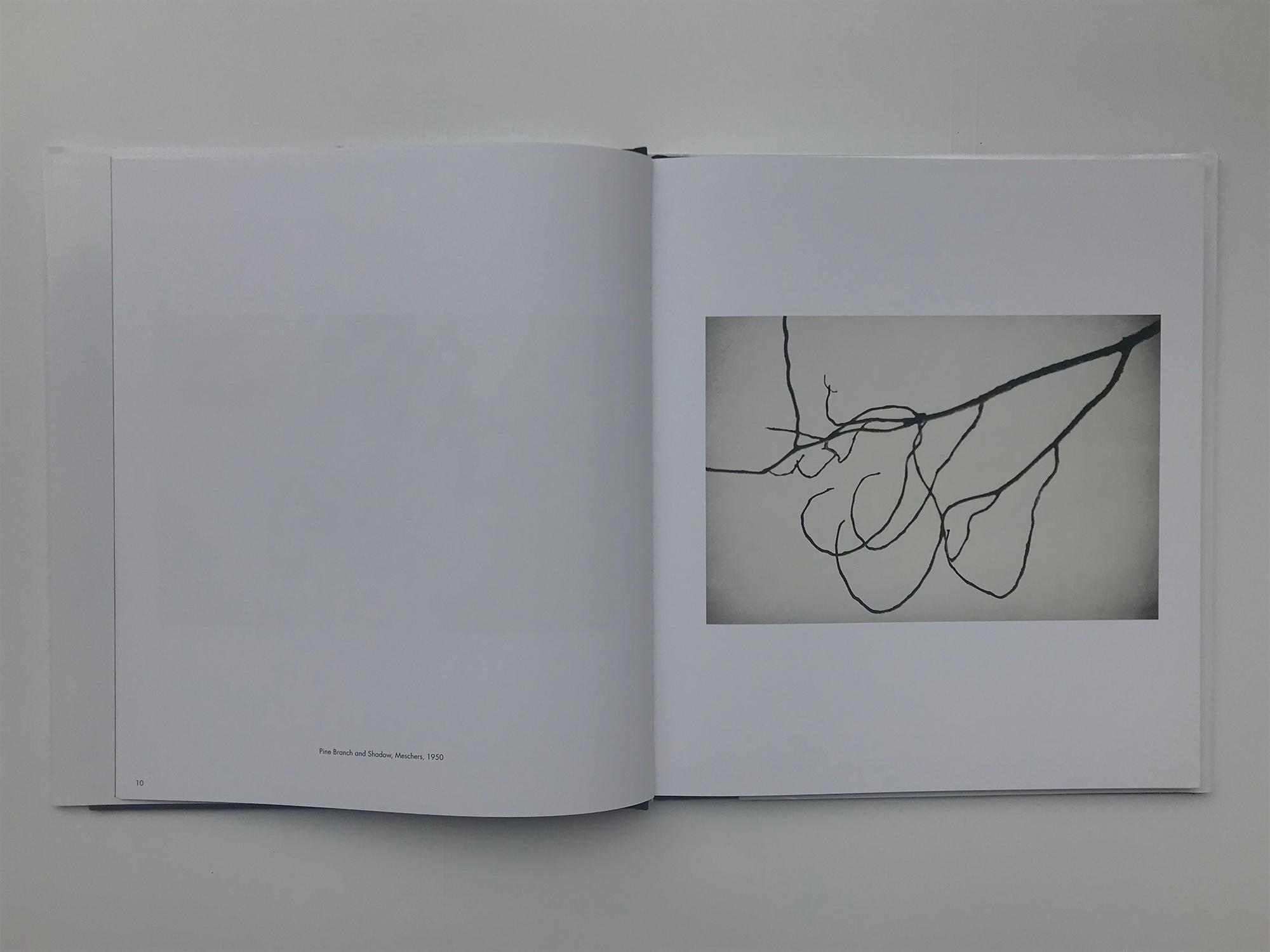 エルズワース・ケリー『Photographs』